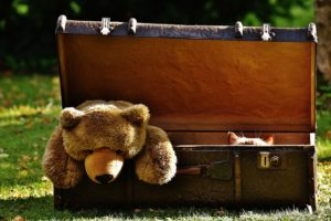 A teddy bear in a suitcase.