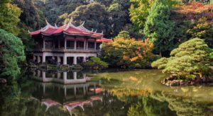 Yips and hints for moving to Japan