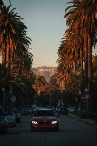 Hollywood Sunset Blvd.